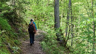 Hiking in Sigulda - Gauja National Park Tour